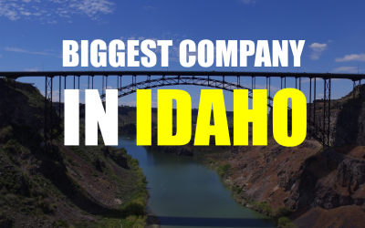 The Biggest Company In Idaho – Albertsons