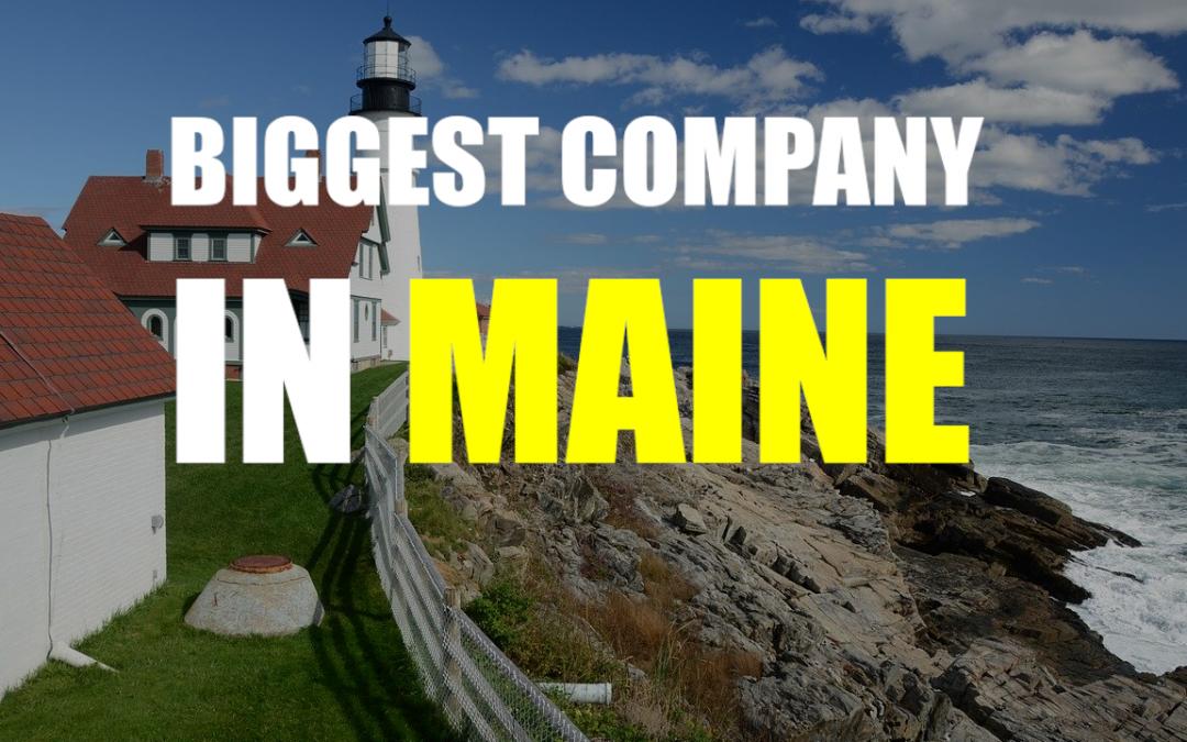 The Biggest Company In Maine – IDEXX Laboratories