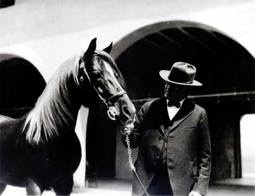 Will Keith Kellogg Arabian horse